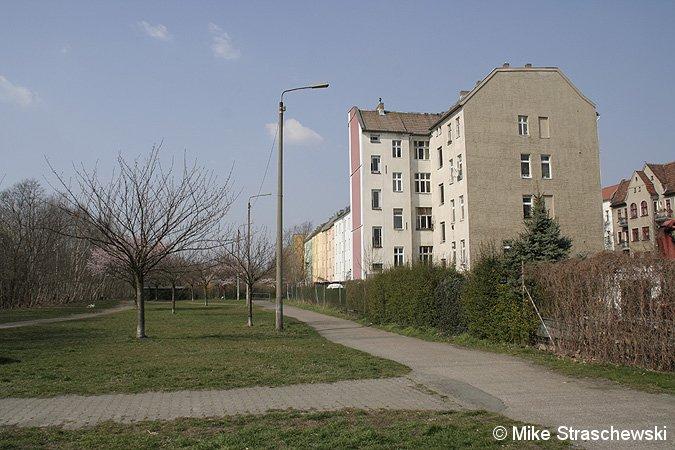 Bild: ex-Kolonnenweg und Kirschbäume
