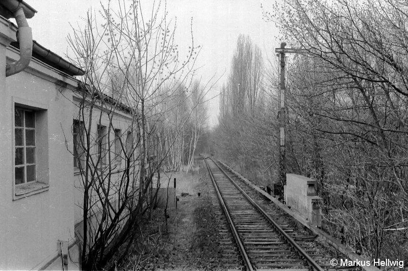 Bild: Heiligensee-4